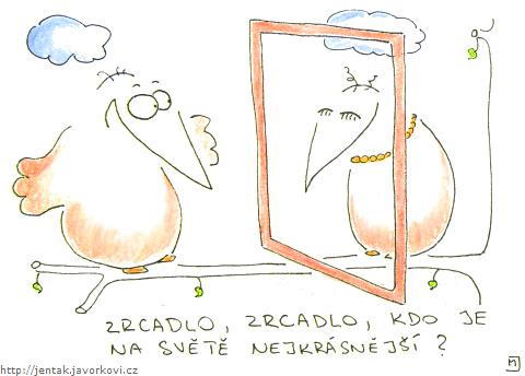 Zrcadlo, zrcadlo, kdo je na světě nejkrásnější?
